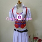 Harley Quinn from DC Comic Cosplay Costume front