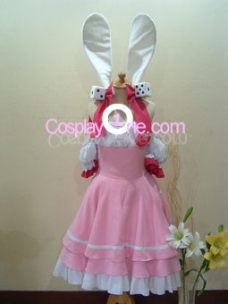 Robi n Rose Cosplay Costume front