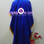 Austria from Hetalia Cosplay Costume back
