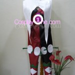 Harley Quinn from DC Comics Cosplay Costume front