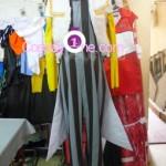 Dampierre from Soul Calibur V Cosplay Costume front prog