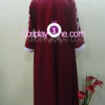 Monkey D. Luffy from One Piece Cosplay Costume back