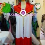 Ragnarok Online from Anime Cosplay Costume front prog