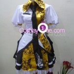 Syameimaru Aya from Anime Cosplay Costume front