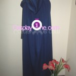 Lucina from Fire Emblem Awakening Cosplay Costume back