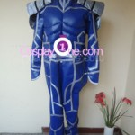 Lancer from Fate/stay night Cosplay Costume front