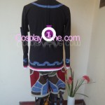 Shulk from Xenoblade Chronicles Cosplay Costume back in