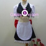 Ayane from Dead or Alive Cosplay Costume front
