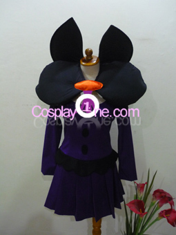 Shauntal from Pokemon Cosplay Costume front