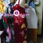 Ada Wong from Resident Evil Cosplay Costume side prog
