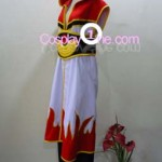 Ragnarok Online from Anime Cosplay Costume side