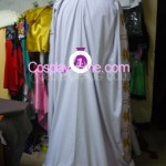 Prince Maximilian from Valkyria Chronicles Cosplay Costume back prog