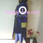 Robin from Fire Emblem Awakening (Tactician) Cosplay Costume side