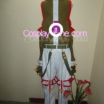 Elsword from The MMO Gameplay Cosplay Costume back