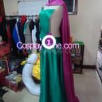 Elsa Coronation Drees side prog Cosplay Costume