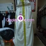 Shiroe (Log Horizon) Cosplay Costume back prog